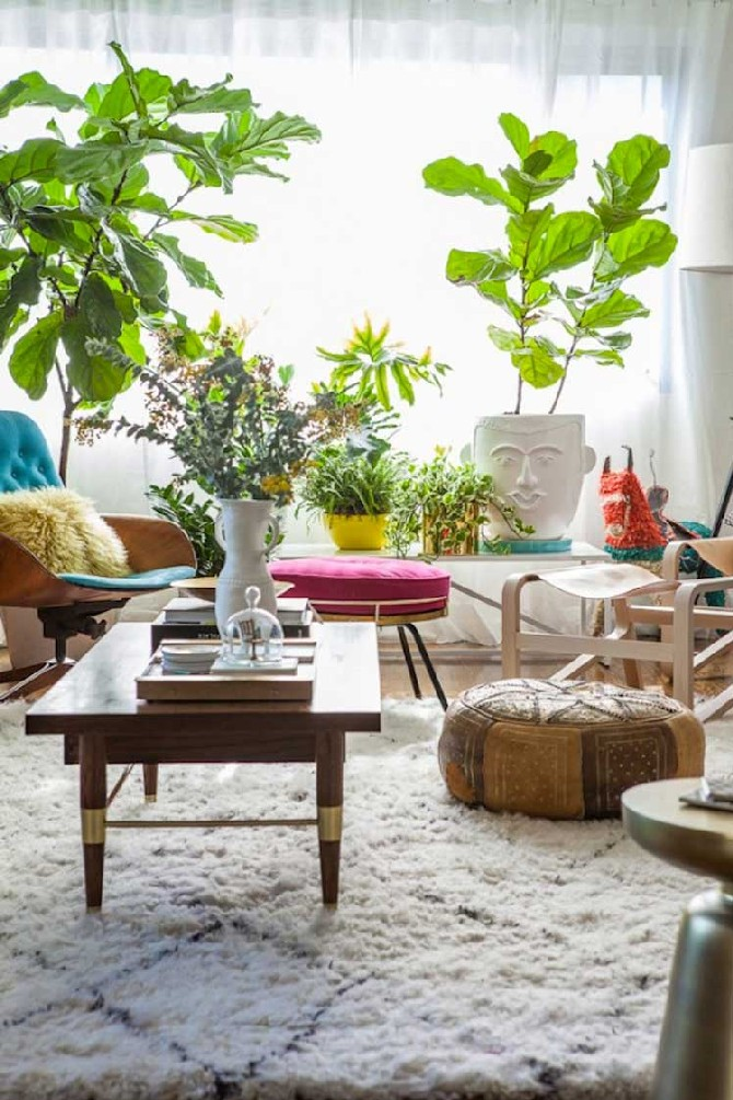 plants in designlovefest living room styled by Emily Henderson summer trends Summer Trends and Ideas for Living Rooms plants in designlovefest living room styled by Emily Henderson