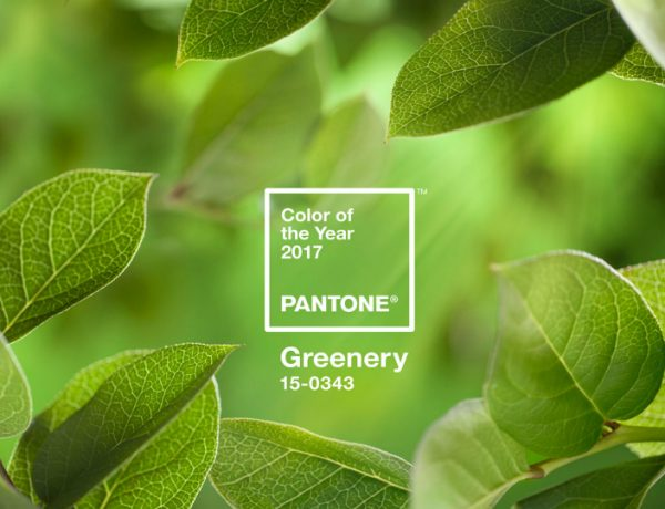 Pantone's Color of the Year for 2017 Is Everything You Might Wish For