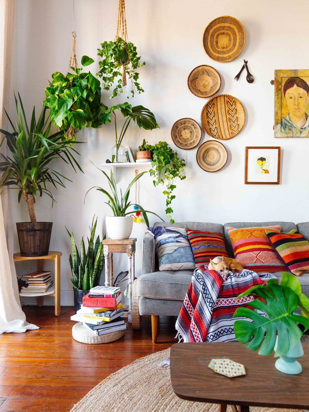 Living room inspiration home filled with vintage decor in Plant room design