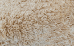 What's Hot on Pinterest: Go Fluffy On Your Interior Decor or Go Home